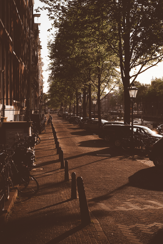 Amsterdam Glow