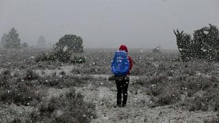 Heavy snowfall, Wilsede