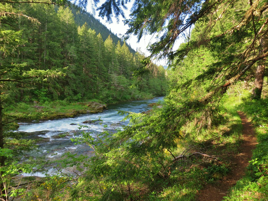 North Fork Trail along the North Fork Willamette River