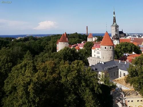 wc-estonia-est_t3-Alexandra-elix-2019-2