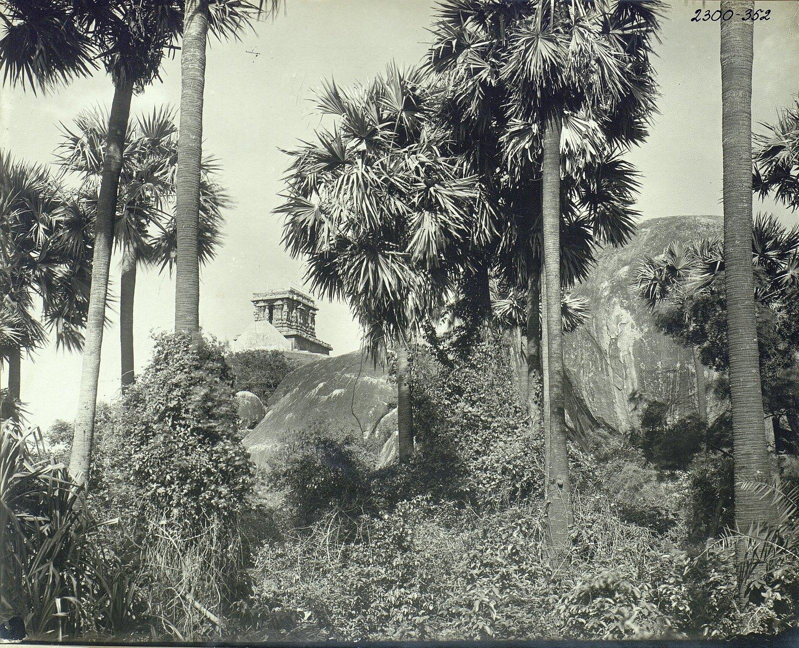 Мамаллапур (общий вид местности, в которой находятся храмы) (2)
