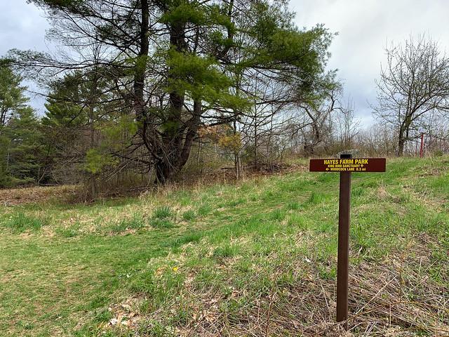 Hayes Farm Park: hayesfarmpark hiking newhampshire etna unitedstatesofamerica