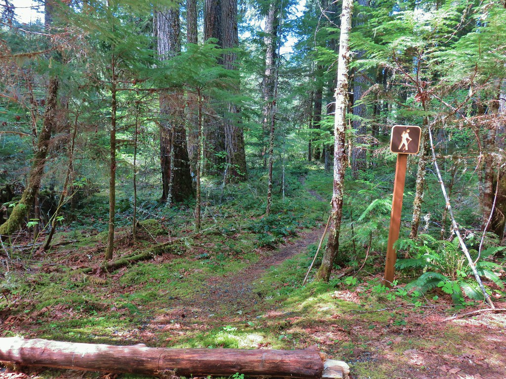 North Fork Trailhead at FR 1939