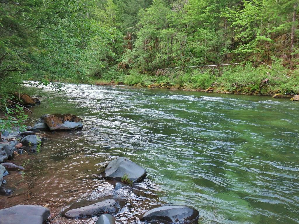 North Fork Willamette River