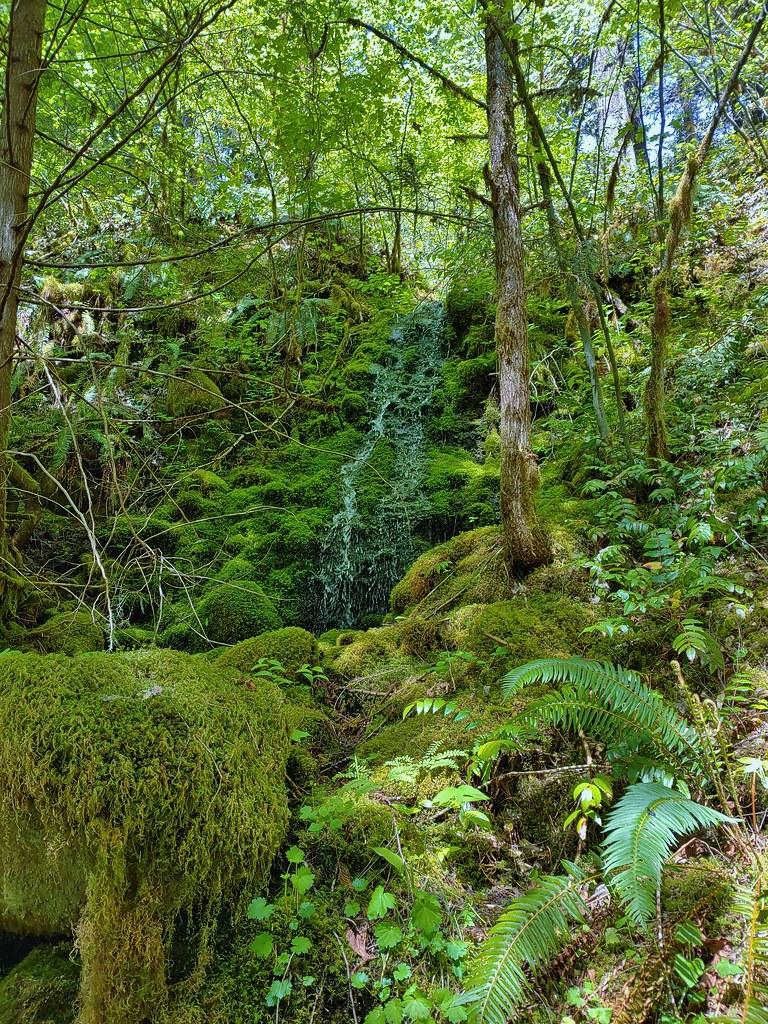 Small off-trail waterfall