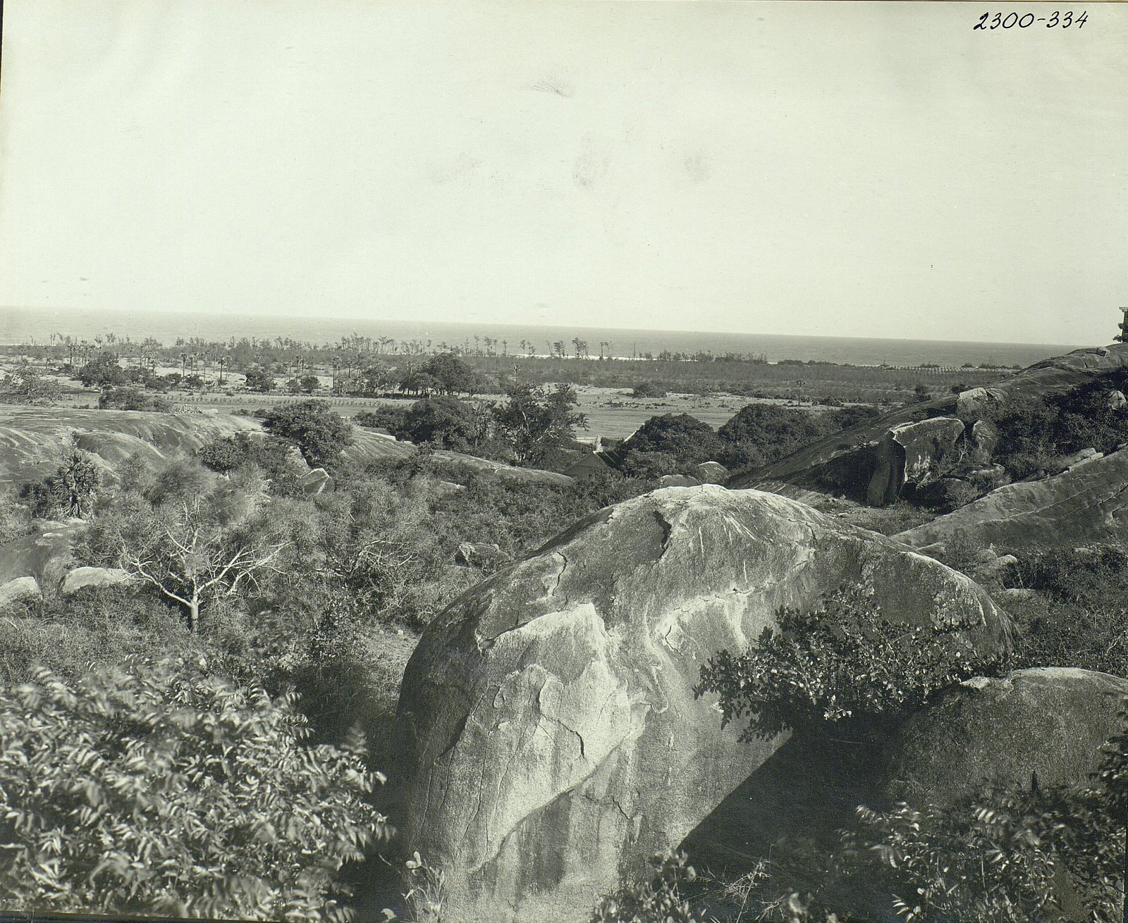 Мамаллапур (общий вид местности, в которой находятся храмы) (7)