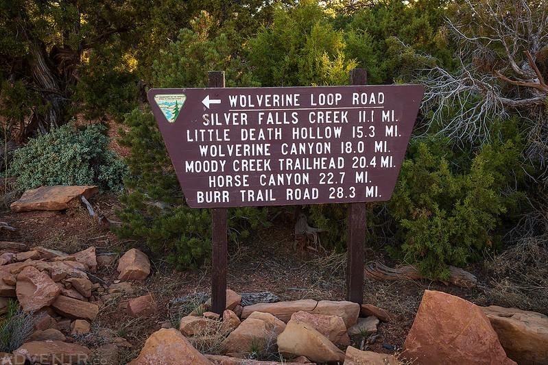 Wolverine Loop Road Sign