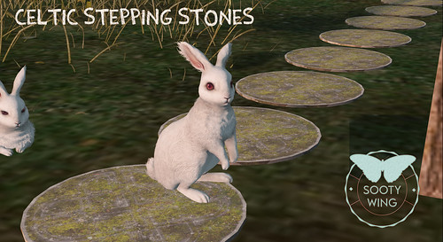 Sooty Wing Group Gift - Celtic Stepping Stones