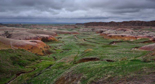 Prairie Grass and Yellow Mounds (Badlands National Park)