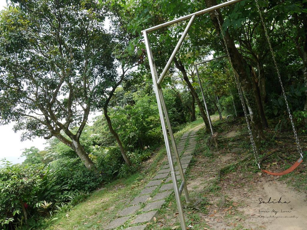 台北新北賞桐花景點分享小南港山爬山一日遊好玩好拍好走步道 (3)
