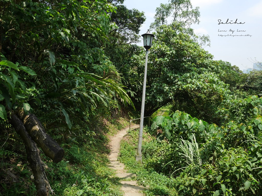 台北汐止一日遊景點推薦小南港山輕鬆好走的懶人踏青登山步道親子 (4)
