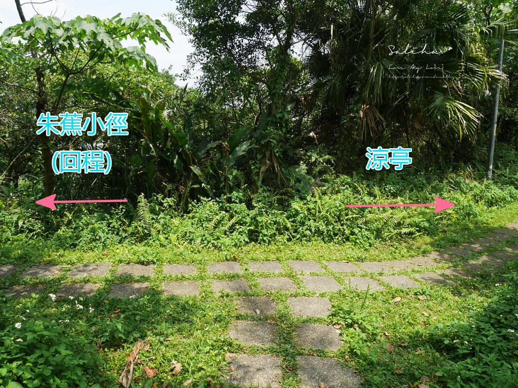 台北汐止一日遊景點推薦小南港山輕鬆好走的懶人踏青登山步道親子 (5)
