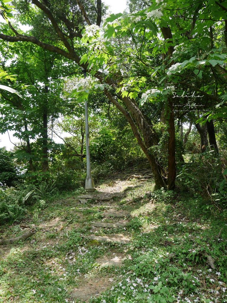 台北汐止一日遊景點推薦小南港山輕鬆好走的懶人踏青登山步道親子 (3)