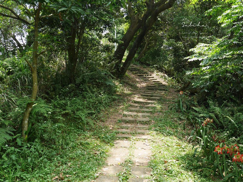 台北汐止一日遊景點推薦小南港山輕鬆好走的懶人踏青登山步道親子 (6)