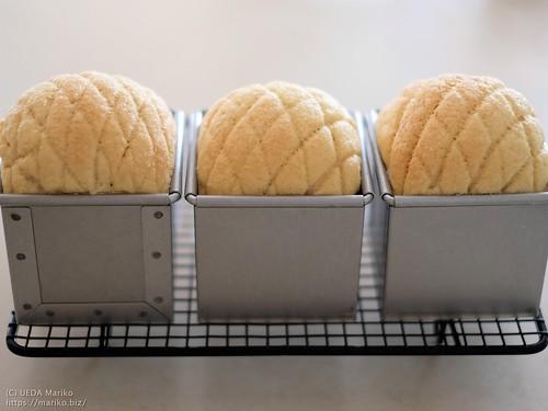 メロン食パン 20200507-DSCT1395 (2)