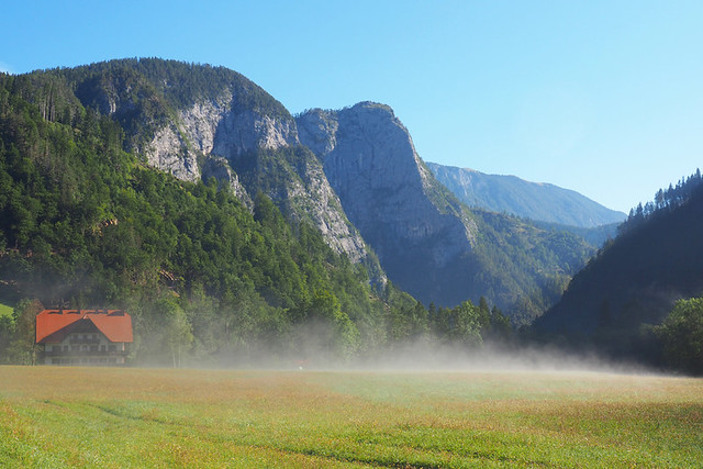 Steam rising from the grass in Logar Valley, Slovenia