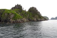 Kenai Fjords scenic-6268