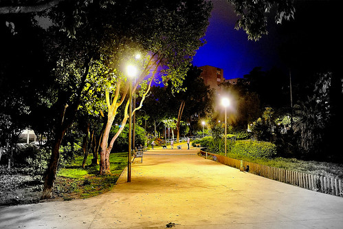 parc parque park walk paseo people dog bet animal tree plant nature naturaleza natura natur road light dark darkness evening night nightview nightshot outside outdoor