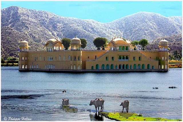 Palais de l'Eau Jal Mahal au milieu de Man Sagar Lake
