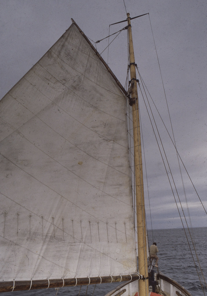 Deli with her mainsail up
