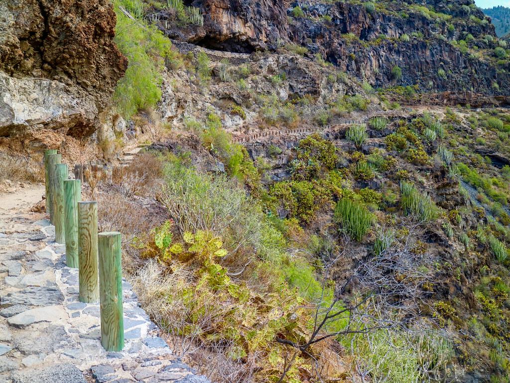 Senderismo por el sur de Tenerife