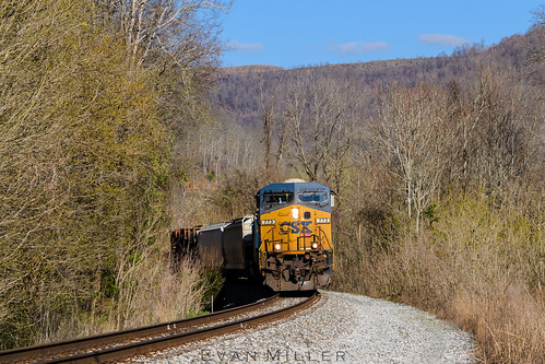 csx csxt c700 cv cvlocal local kentucky nikon d3100