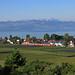 Bodensee-Blick