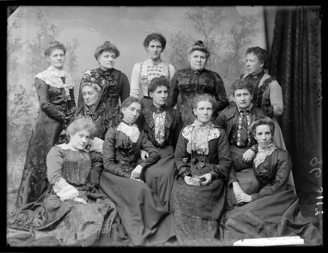 Womanhood Suffrage League of New South Wales, 1902, by Freeman Studio