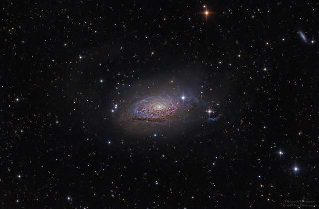 The Fluffy Sunflower Galaxy Messier 63 from Grand Mesa Observatory