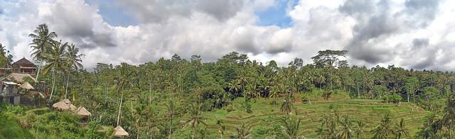 Tegalalang Rice Field, Bali, Indonesia.