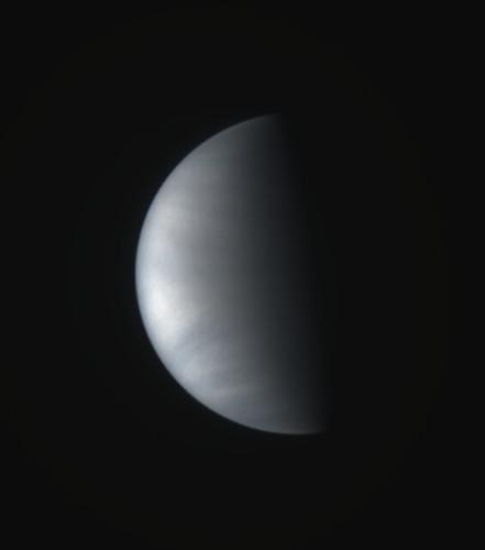 Venus, January 1995