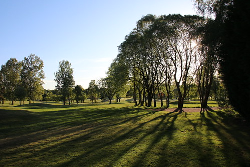 sunrise bothwellcastle golfcourse trees