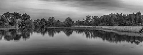 Hayling Lake