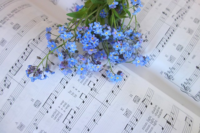 music and flowers balm for the soul