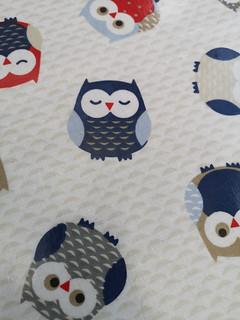 Owl table cloth
