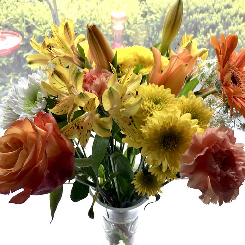 flowers vibrant texture htt cmwd iphone windows viewbeyond hww