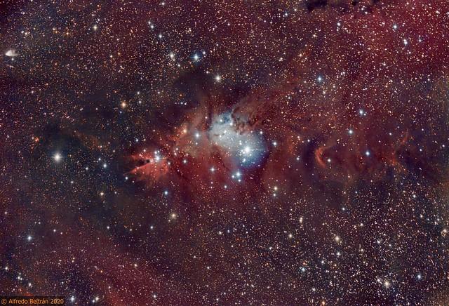 Nebulosa del Cono NGC 2264 (Cone nebula) HaRGB