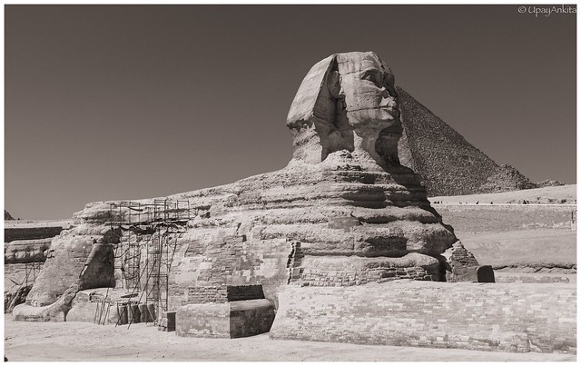 The enigmatic Sphinx of Giza- B&W