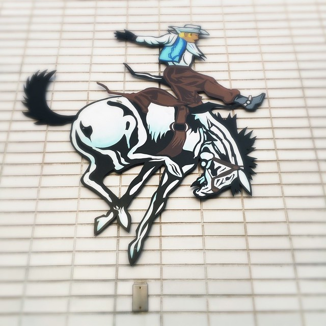 [134/366] Bronco's West