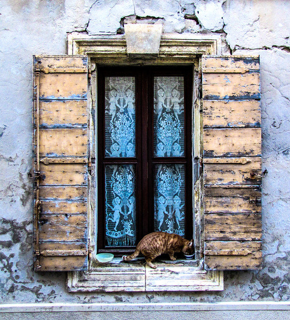 Window with Cat, Arles, France