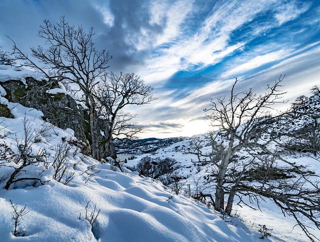 Hidden Canyon Trail, Washington, USA