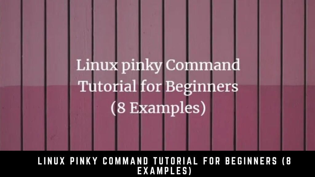 Linux Pinky Command Tutorial for Beginners (8 Examples)