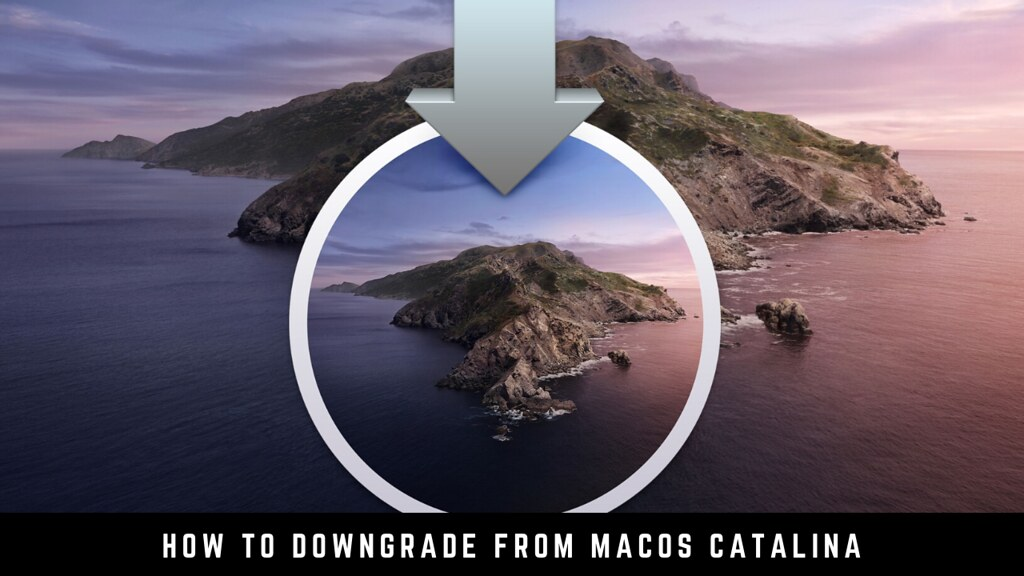 How to downgrade from macOS Catalina