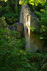 The Old Mill Jesmond Dene May 2020