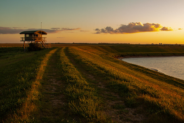 Salt Marsh Friskney