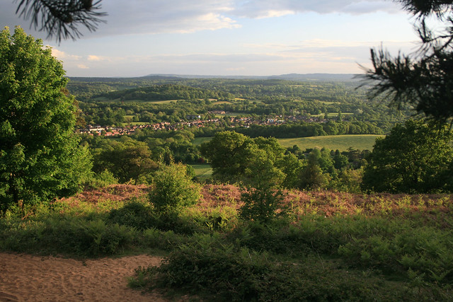 The view from St Martha's Hill