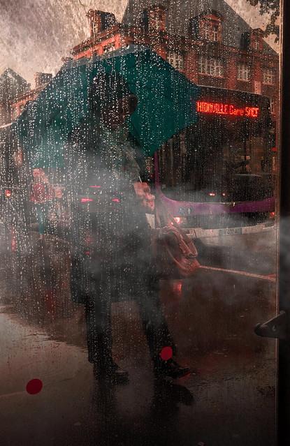 The street in the rain