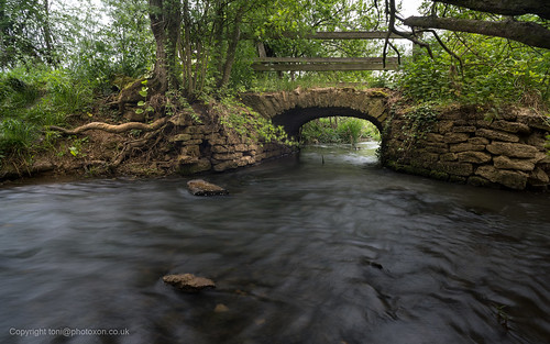 Bowmans Bridge 3 | by toniertl