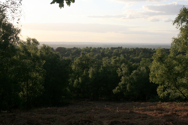 Looking north from St Martha's Hill