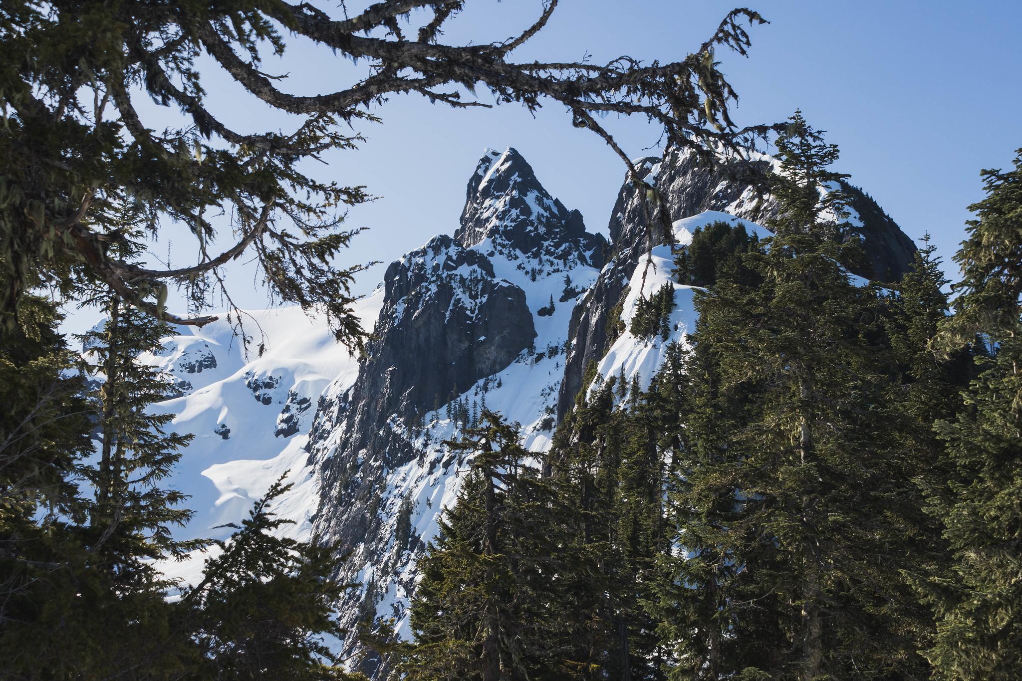 Whitehorse Mountain northwest ridge